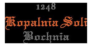 Kopalnia Soli Bochnia logo