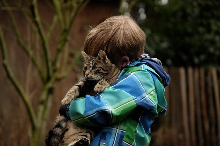 Chłopczyk tulący kotka