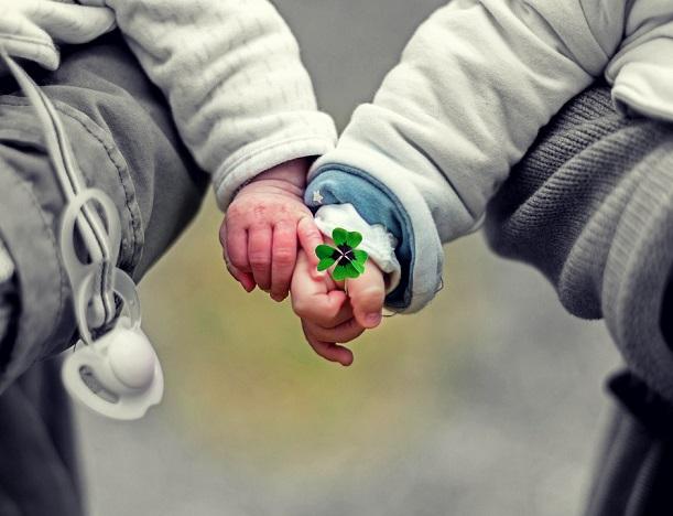 małe dziecko trzymające koniczynkę