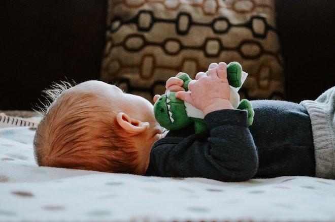dziecko z pluszowym dinozaurem