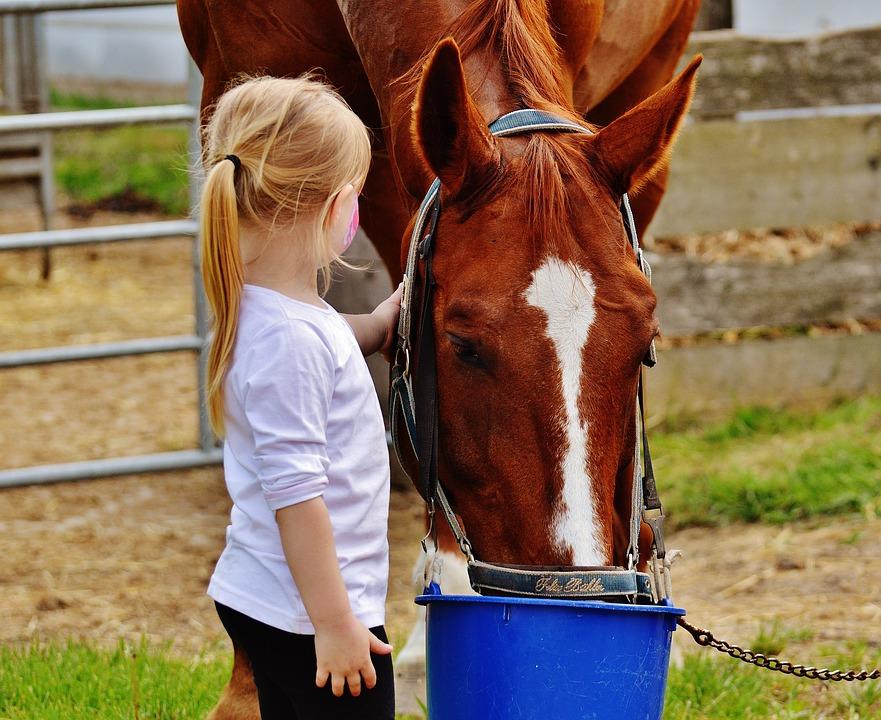 Dziewczynka głaszcząca konia