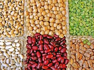 Dieta wegetariańska dla dzieci - zalety i wady