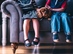 Pies przyjacielem Twojego dziecka