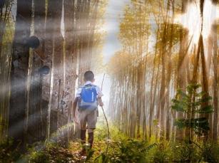 Dzieci i kontakt z przyrodą