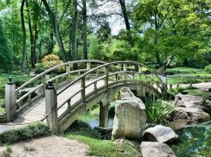 Ogrody botaniczne - daj się wciągnąć w naturę!