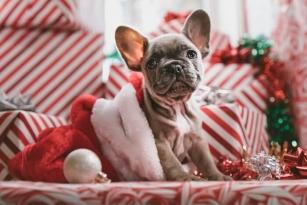 6 sposobów, by prezenty świąteczne były zawsze trafione