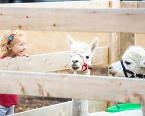 Ogrody zoologiczne i obiekty przyrodnicze dla dzieci