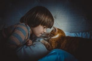Jakie zwierzę wybrać dla dziecka?